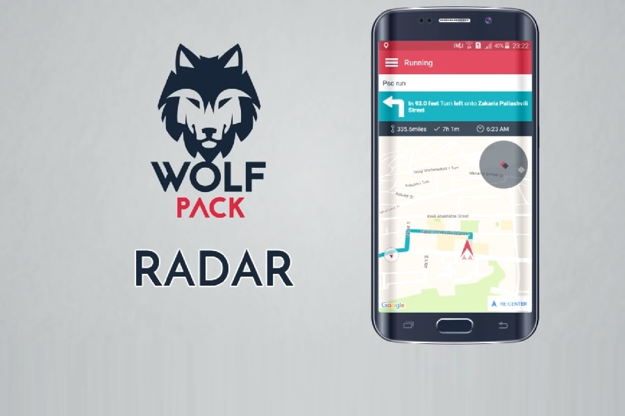 wolfpack application 4