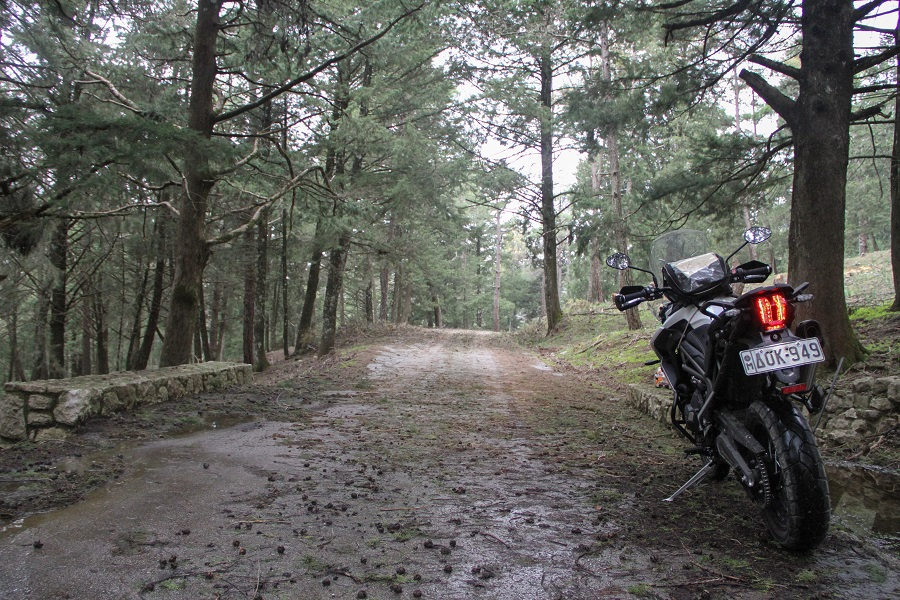 triumph tiger 800 xcx ambience 16